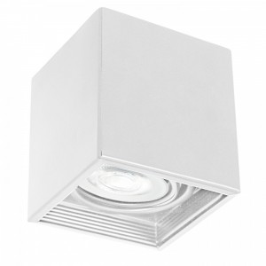 DOWNLIGHT ROTARY white 0324 Luminex