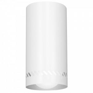 INSERT ROUND white S 8544 Luminex